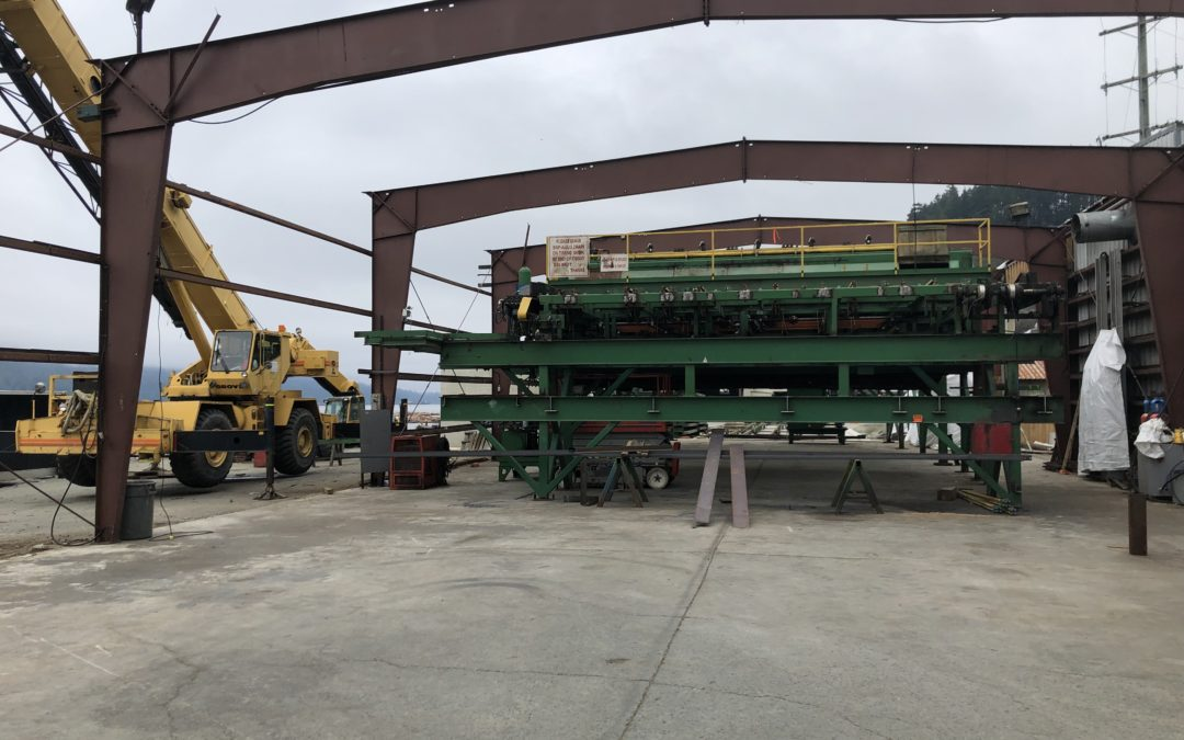 New sawmill construction is well on schedule for completion date in March 2020